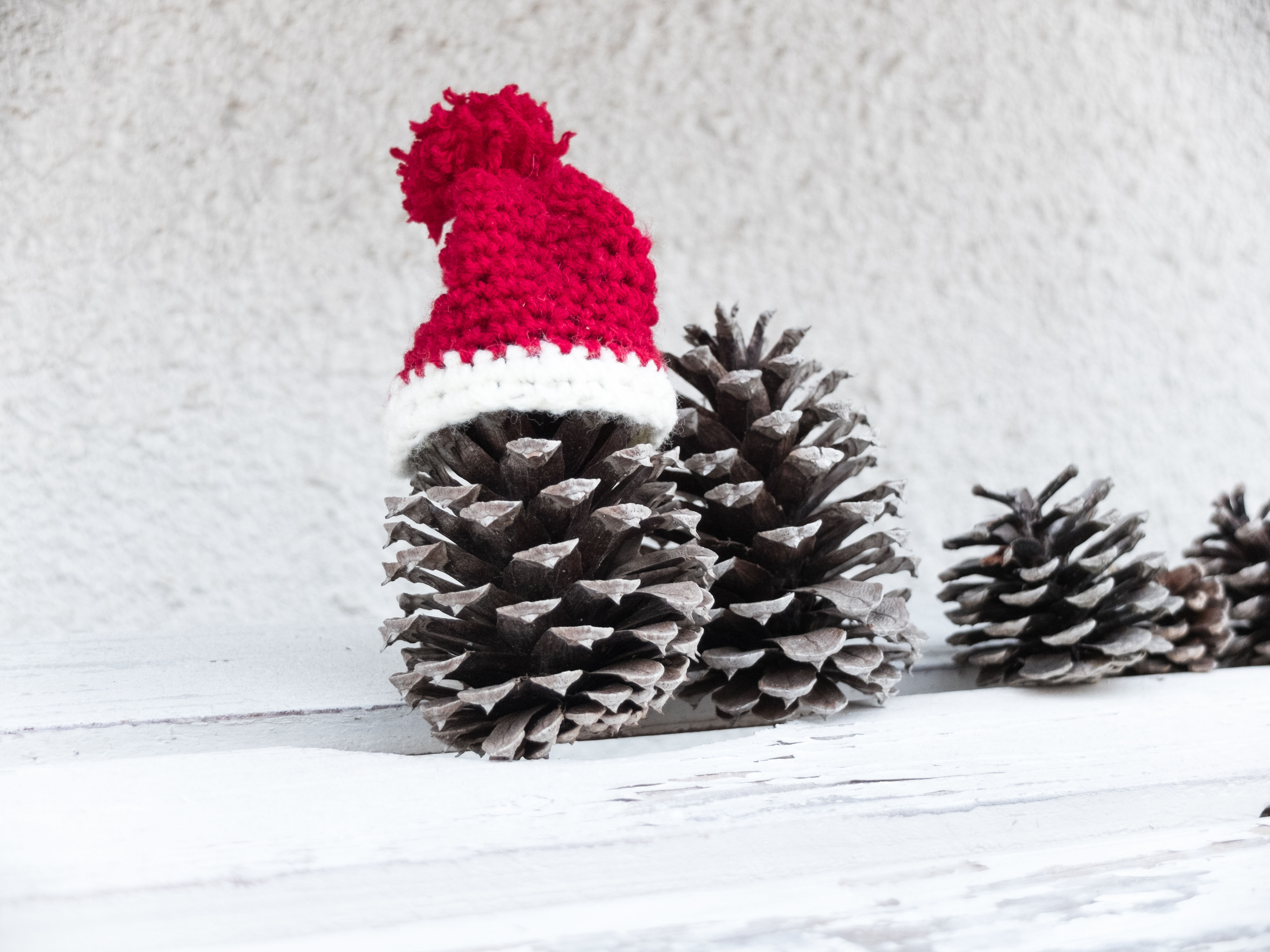 pine cone at christmas